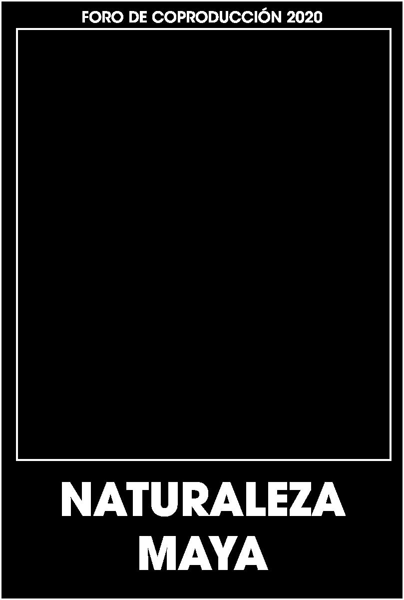 naturaleza maya